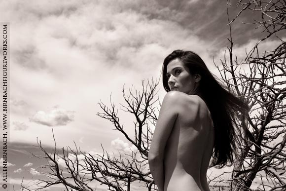 Fine art nude photography workshop by acclaimed photographer Allen Birnbach