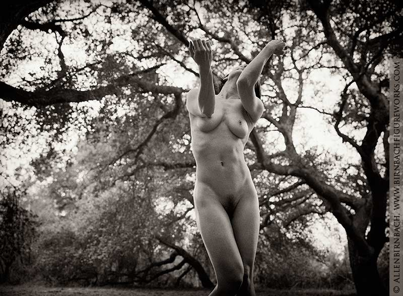 nude photography instruction by acclaimed photographer Allen Birnbach